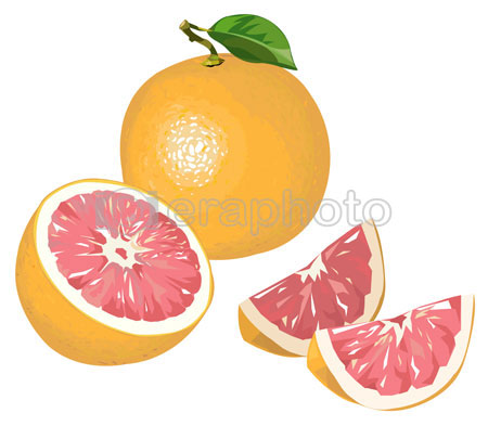 #2000058 - Grapefruit with half and wedges