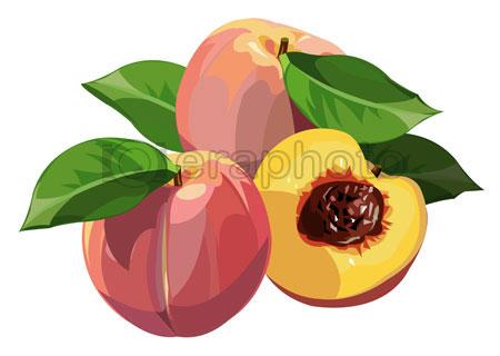 #2000101 - Peaches