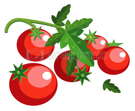 #2000131 - Simple tomatoes with leaves
