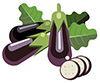 #2000051 - Eggplants with leaves and slices