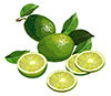 #2000077 - Limes with half and slices